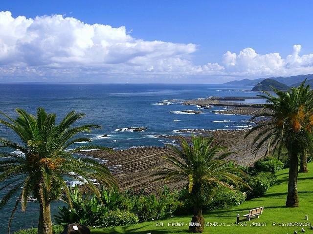 フェニックス越しに見る日南海岸 p_miyazaki_08_006.jpg