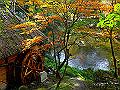 宮崎県写真壁紙(紅葉 高千穂峡) p_miyazaki_11_016_s.jpg